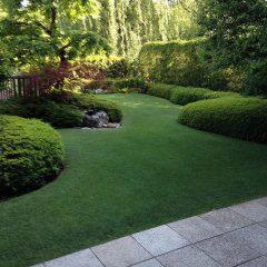 庭園 日本芝