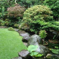 雨の日の芝刈り